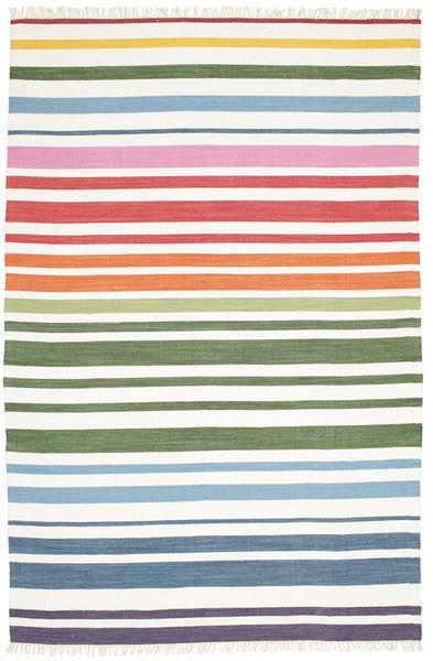 Rainbow Stripe - Valkoinen Matto 250X300 Moderni Käsinkudottu Valkoinen/Creme Isot (Puuvilla, Intia)