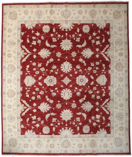 Ziegler Ariana Matto 245X291 Itämainen Käsinsolmittu Vaaleanharmaa/Tummanpunainen (Villa, Afganistan)
