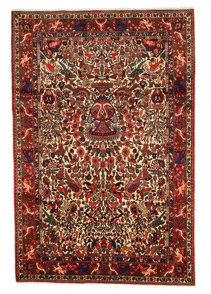 Bakhtiar Collectible Matto 208X311 Itämainen Käsinsolmittu Tummanpunainen/Tummanruskea (Villa, Persia/Iran)