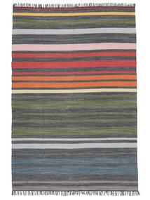 Rainbow Stripe - Harmaa Matto 140X200 Moderni Käsinkudottu Tummanharmaa/Oliivinvihreä (Puuvilla, Intia)