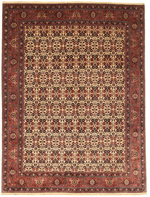Bidjar Takab/Bukan Matto 255X351 Itämainen Käsinsolmittu Tummanpunainen/Tummanruskea Isot (Villa, Persia/Iran)