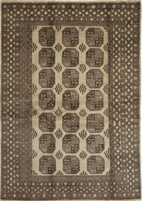 Afghan Natural Matto 200X281 Itämainen Käsinsolmittu Vaaleanruskea/Ruskea/Vaaleanharmaa (Villa, Afganistan)