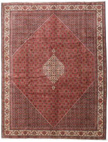 Bidjar Zanjan Matto 300X390 Itämainen Käsinsolmittu Tummanruskea/Tummanpunainen Isot (Villa, Persia/Iran)