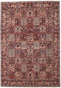 Bakhtiar Patina Matto 253X365 Itämainen Käsinsolmittu Tummanpunainen/Tummanruskea Isot (Villa, Persia/Iran)