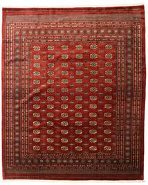 Pakistan Bokhara 3Ply Matto 253X305 Itämainen Käsinsolmittu Tummanpunainen/Tummanruskea Isot (Villa, Pakistan)