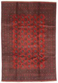 Afghan Matto 200X288 Itämainen Käsinsolmittu Tummanpunainen/Tummanruskea (Villa, Afganistan)