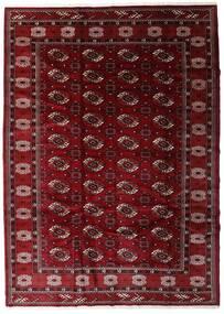 Turkaman Matto 204X285 Itämainen Käsinsolmittu Tummanpunainen/Tummanruskea (Villa, Persia/Iran)