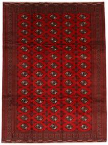 Turkaman Matto 252X338 Itämainen Käsinsolmittu Tummanpunainen/Ruoste Isot (Villa, Persia/Iran)