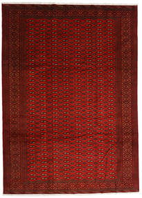 Turkaman Matto 248X340 Itämainen Käsinsolmittu Punainen/Ruoste (Villa, Persia/Iran)