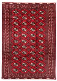Turkaman Matto 199X282 Itämainen Käsinsolmittu Tummanpunainen/Punainen (Villa, Persia/Iran)