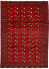 Turkaman Matto 240X336 Itämainen Käsinsolmittu Tummanpunainen/Ruoste (Villa, Persia/Iran)