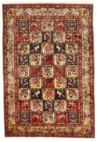 Bakhtiar Collectible Matto 212X311 Itämainen Käsinsolmittu Tummanpunainen/Tummanruskea (Villa, Persia/Iran)
