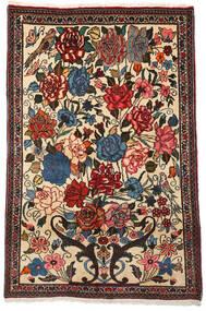 Bakhtiar Collectible Matto 100X154 Itämainen Käsinsolmittu Tummanruskea/Beige (Villa, Persia/Iran)