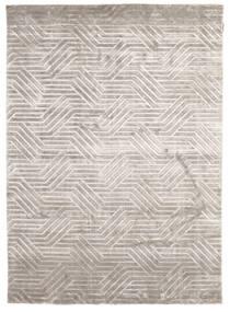 Viskoosi Moderni Matto 173X240 Moderni Käsinsolmittu Vaaleanharmaa/Vaaleanruskea ( Intia)