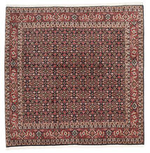 Bidjar Zandjan Matto 204X204 Itämainen Käsinsolmittu Neliö Tummanruskea/Tummanpunainen (Villa, Persia/Iran)